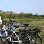 Beste Amslod fiets kopen